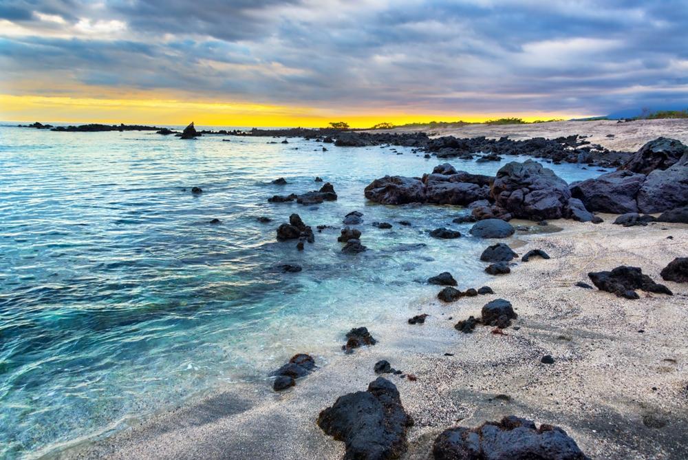 The Galápagos Islands, A Beginning